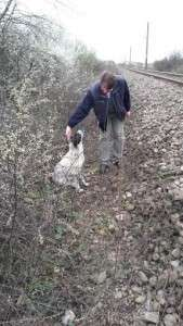 1.2. s.o.s. dog hit by train <h3>S.O.S. Dog hit by train</h3> 1